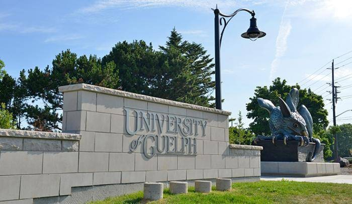 University Of Guelph International Tuition Scholarships, Canada - 2018