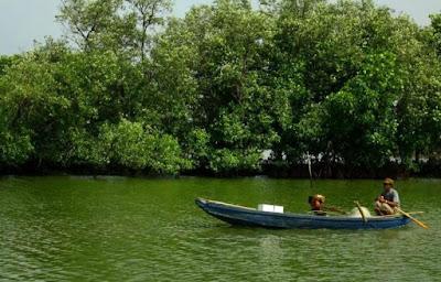 Tempat Wisata Pantai Muara Beting di Bekasi