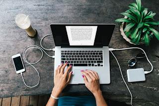 penulis online