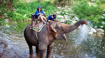 Taman Nasional Khao Yai