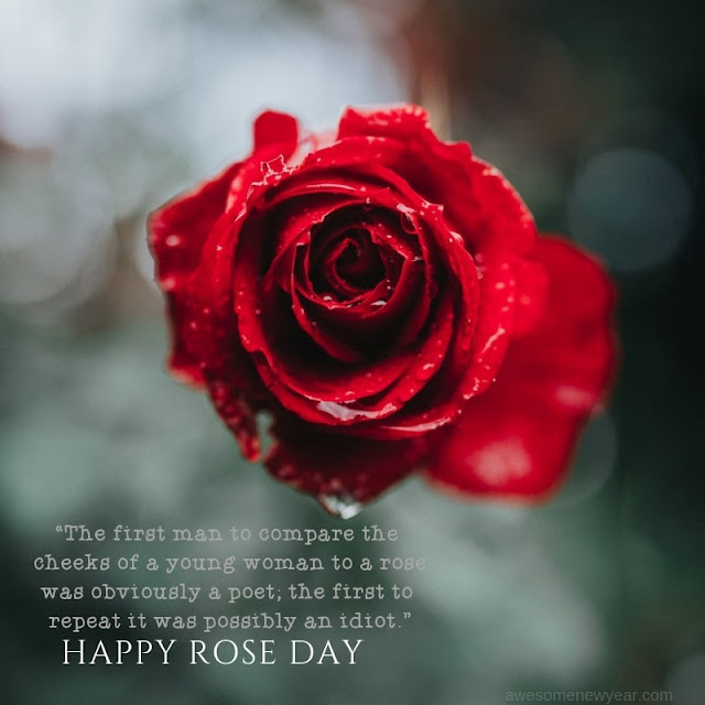 Happy Rose Day Quotes 2019