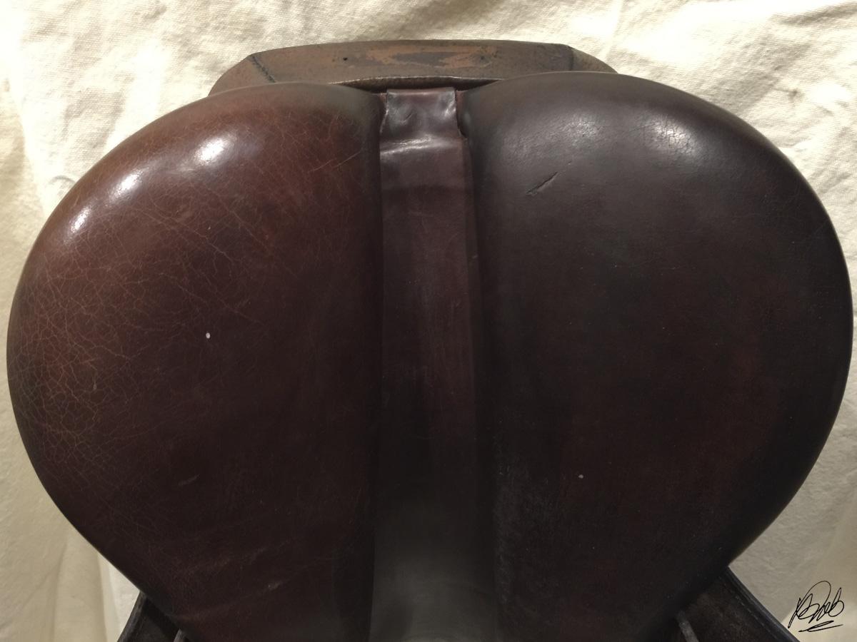 saddle panel treated with vinegaroon