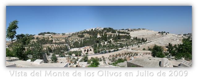 Vista del Monte de los Olivos en Julio de 2009 - Los 144 Mil Sellados - Explicación de Apocalipsis 14:1-5