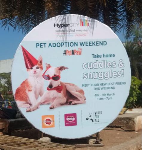 Pet adoption weekend at HyperCITY!