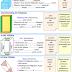 3. Sınıf Matematik Geometrik Cisimler Ve Yüzeyleri Etkinliği