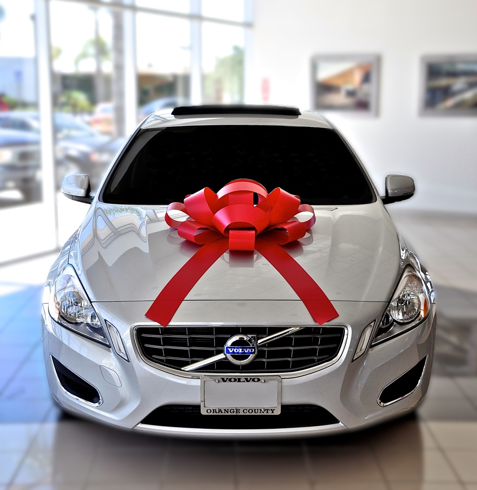 E-Z Lettering Service: Holiday Car Bows, Windshield Bows
