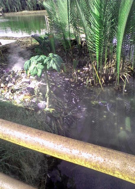 pencemaran sungai 2