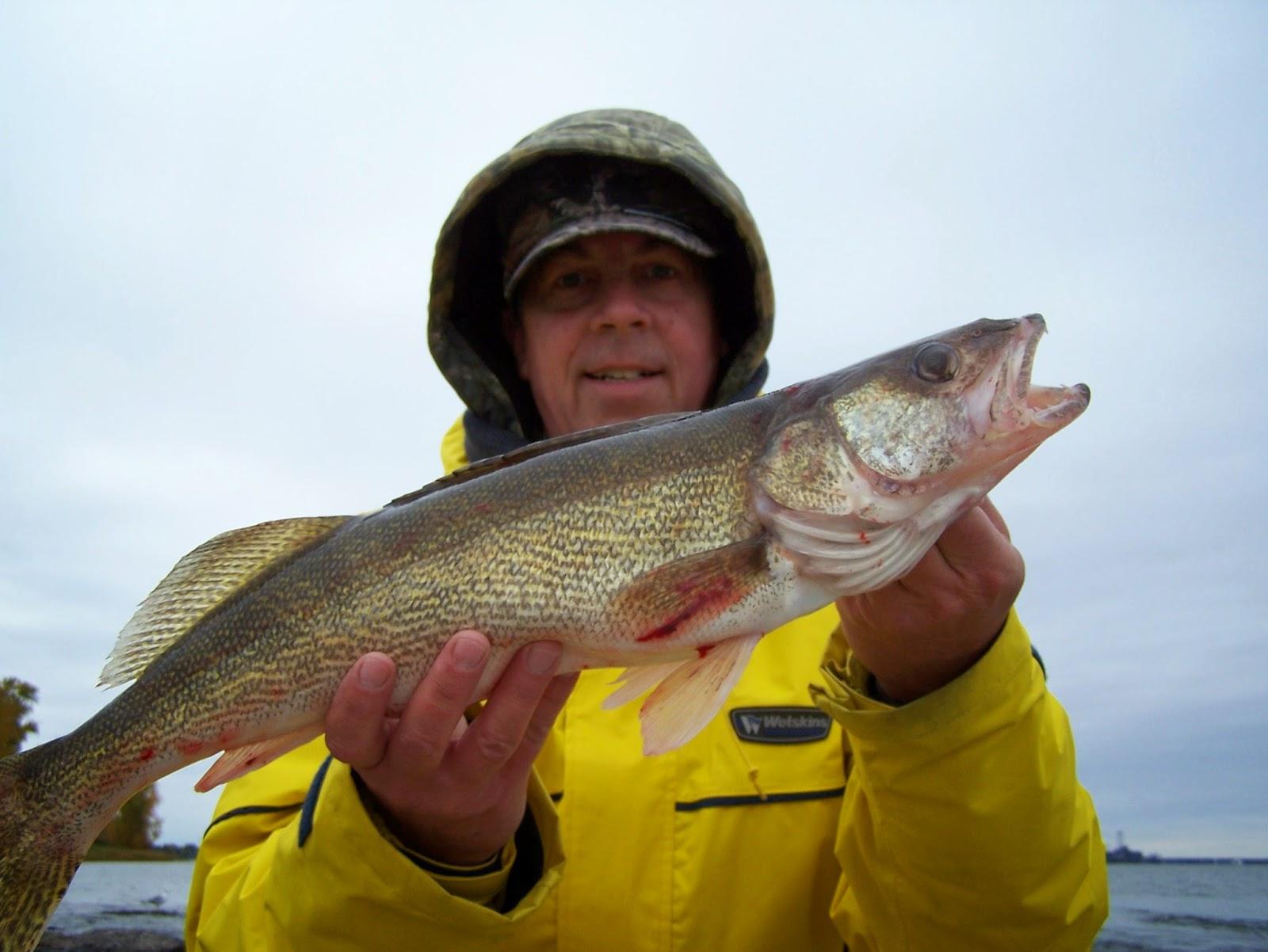 Pêche au Québec, pêche doré, pêche Lac Saint-Pierre, Parlons pêche, pêche fleuve Saint-Laurent