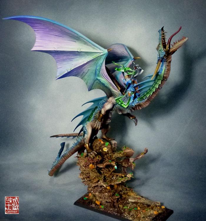 [Vente] Armée scyrah et hauts elfes P1100107