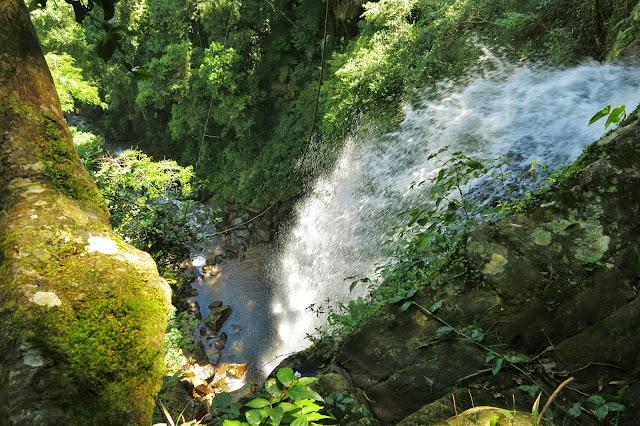Cachoeira Arapongas