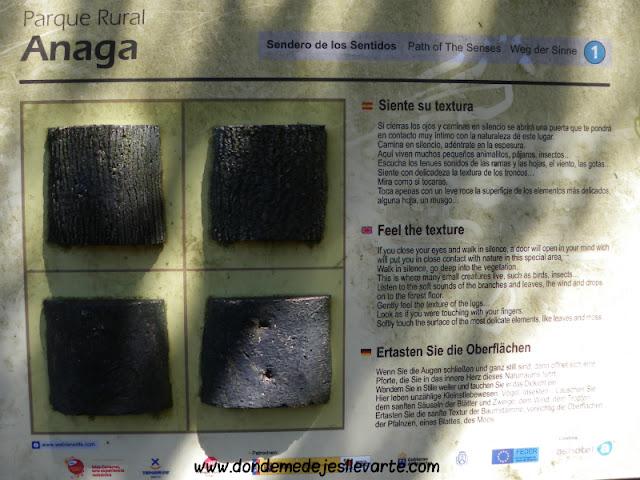 Sendero de los sentidos - Parque Rural de Anaga