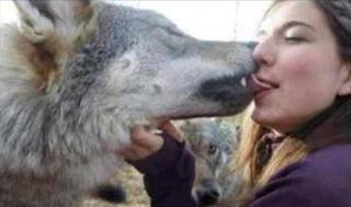 smiješna slika: žena ljubi vuka