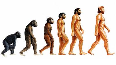 Biografi Charles Darwin  Lahirnya bersamaan benar dengan Abraham Lincoln, 12 Februari 1809 di Shrewsbury, Inggris. Charles Darwin penemu teori evolusi organik dalam arti seleksi alamiah ini pada umur enam belas tahun masuk Universitas Edinburg belajar kedokteran, tetapi baik kedokteran maupun anatomi dianggapnya ilmu yang bikin jemu. Tak lama kemudian dia pindah ke Cambridge belajar unsur administrasi perkantoran. Walau begitu, berburu dan naik kuda di Cambridge jauh lebih digemarinya ketimbang belajar ilmu itu. Dan walaupun begitu, dia toh masih bisa memikat perhatian salah satu mahagurunya yang mendorongnya supaya ikut dalam pelayaran penyelidikan di atas kapal H.M.S. Beagle sebagai seorang naturalis. Mula-mula ayahnya keberatan dengan penunjukan ini. Pikirnya, perjalanan macam itu hanyalah dalih saja buat Darwin yang enggan dengan pekerjaan serius. Untungnya, belakangan sang ayah bisa dibujuk dan merestui perjalanan itu yang akhirnya ternyat merupakan perjalanan yang paling berharga dalam sejarah ilmu pengetahuan Eropa.  Darwin mulai berangkat berlayar di atas kapal Beagle tahun 1831. Waktu itu umurnya baru dua puluh dua tahun. Dalam masa pelayaran lima tahun, kapal Beagle mengarungi dunia, menyelusuri pantai Amerika Selatan dalam kecepatan yang mengasyikkan, menyelidiki kepulauan Galapagos yang sunyi terpencil, mengambah pulau-pulau di Pacifik, di Samudera Indonesia
