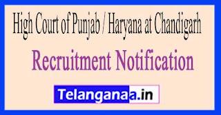 High Court of Punjab / Haryana at Chandigarh Recruitment Notification 2017