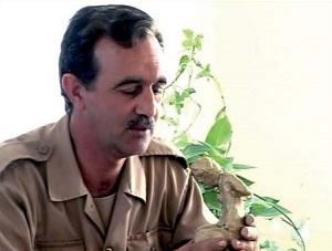 ناصر سرابي،