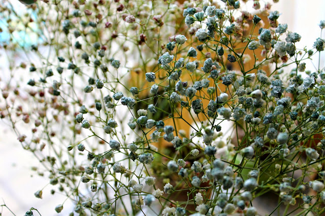 How to naturally dye baby's breath #DIY