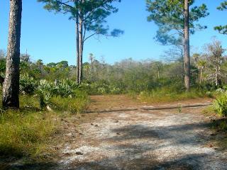 Camping at Jonathan Dickinson State Park, Florida