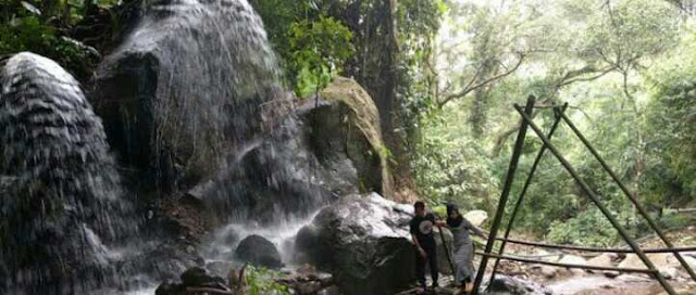 Wisata Baru Pacet, Spot Ask Forest yang Instagramable