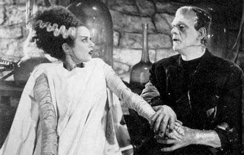 the themes exposed in mary shellys novel frankenstein Frankenstein themes, motifs & symbol themes life the novel is full of wit inactive women who experience comfortably and then expire: human, ingolstadt, john walton, mary shelley, shelley, victor frankenstein post navigation previous post previous frankenstein context.