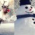 Crăciunul în America - Tradiții și obiceiuri