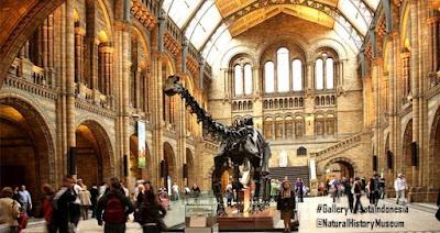 Natural History Museum | Tempat Wisata di London