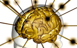 Trastornos de la memoria pérdida de memoria