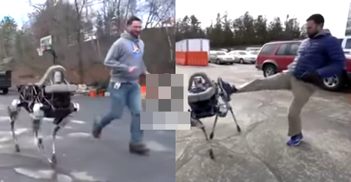 robot dog, scot, google, boston dynamics, video