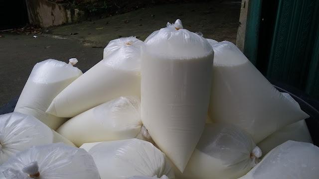 10 Fungsi Susu Sapi Murni untuk Kesehatan dan Tubuh