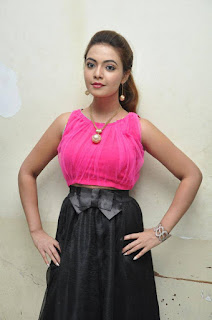 Actress Marina Aham Pictures At Romance With Finance Movie Press Meet 0014