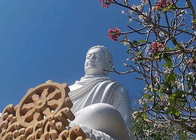 Tìm hiểu ý nghĩa hậu duệ cây Bồ Đề thiêng của Ấn Độ ở Vũng Tàu