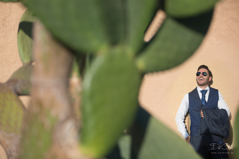 cactus novio