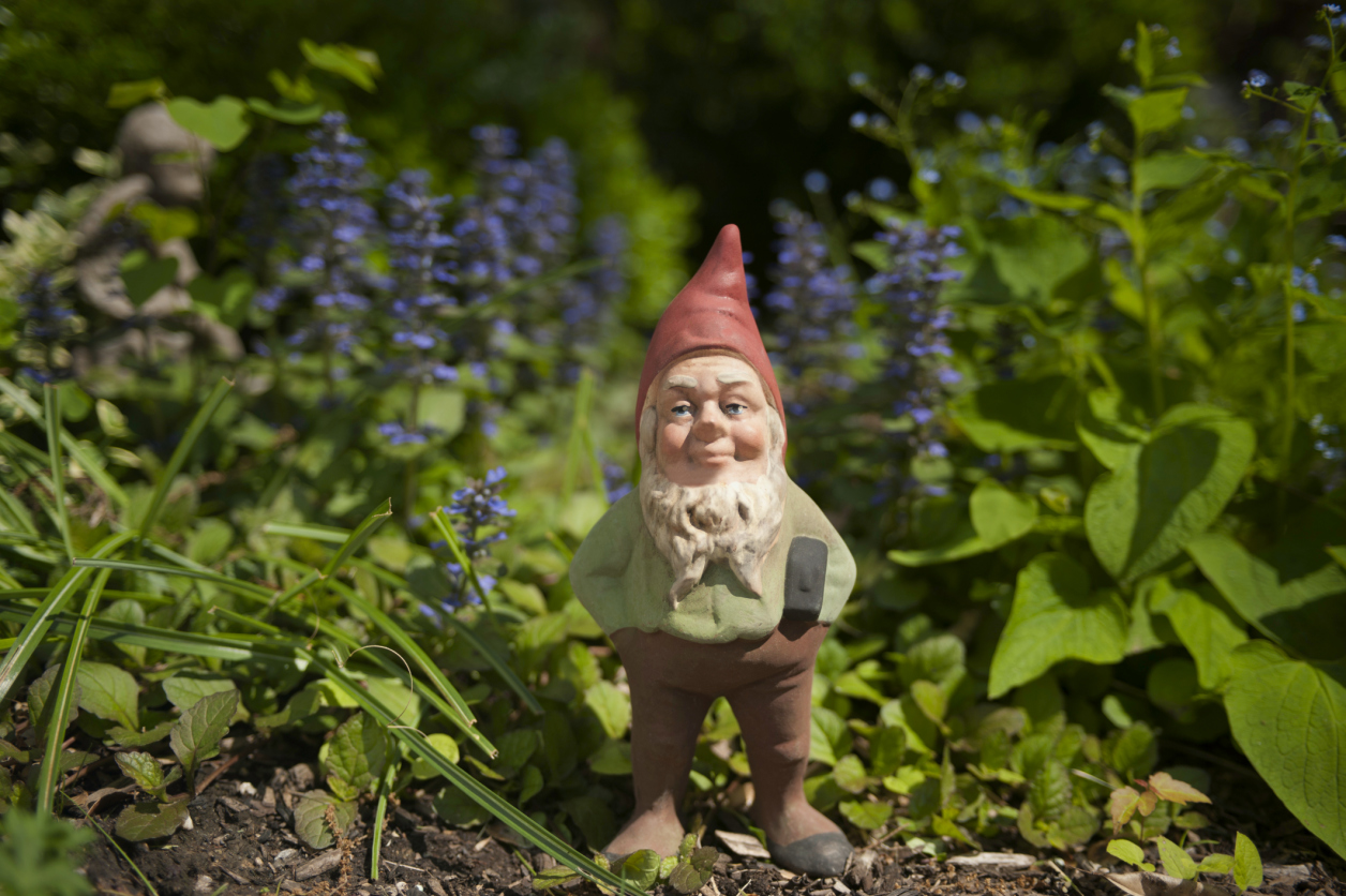 Gnome In Garden: The Antiquer's Field Guide
