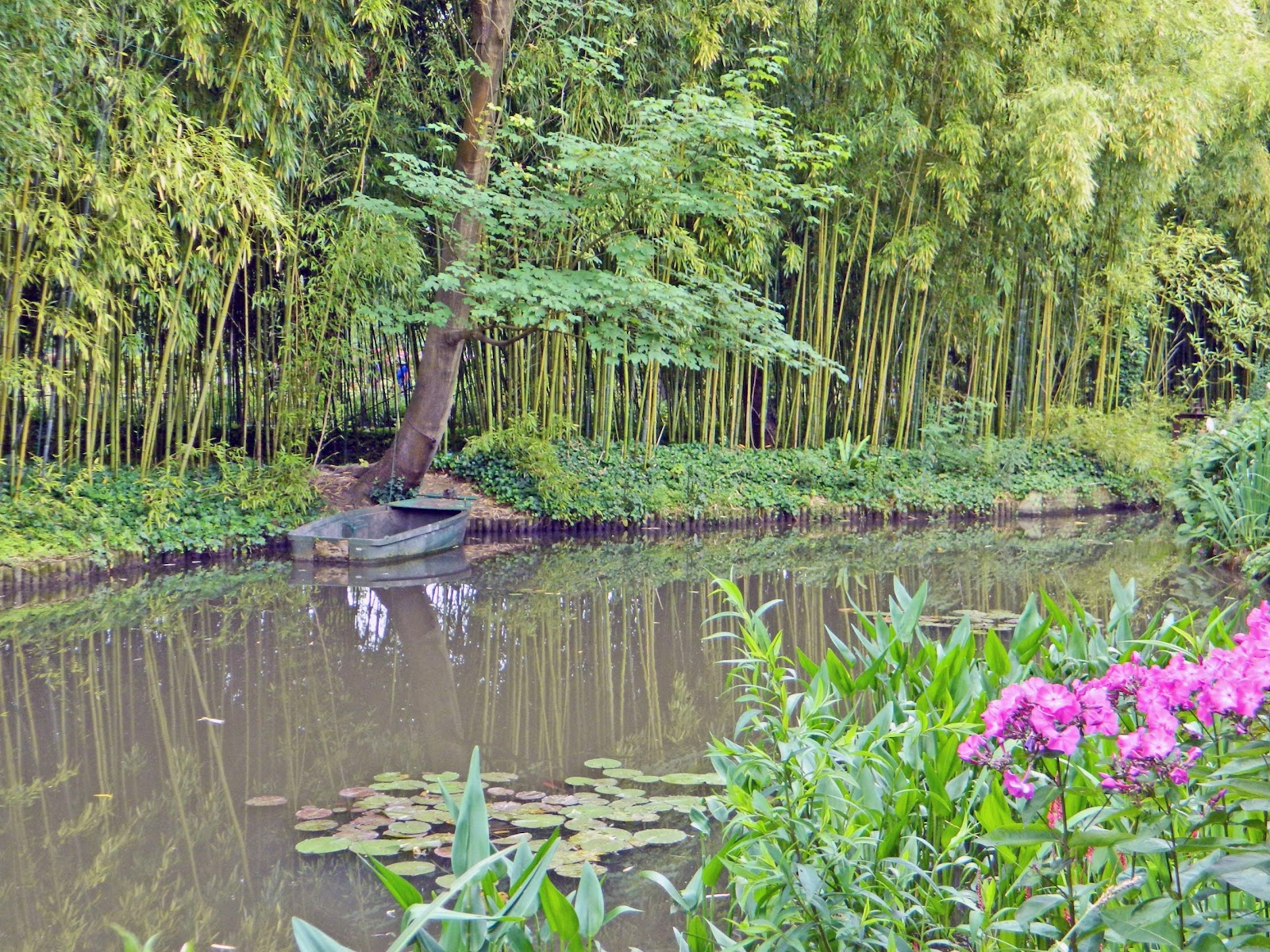 Jax Stumpes Giverny 7 5 2016