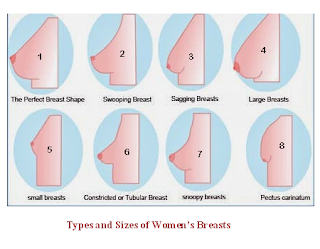 what are the different breast sizes