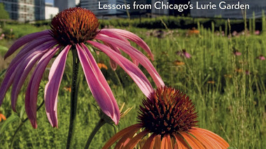 Gardening with Perennials. Aprendiendo de Chicago