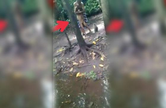 Video Kakek Siksa Cucu, Diumpankan ke Monyet di Pasuruan Jadi Viral