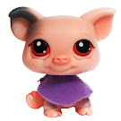 Littlest Pet Shop Multi Packs Pig (#259) Pet