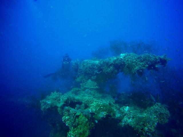 Truk Lagoon, Chuuk, Micronesia, FSM, Diving, Gun, Shipwreck