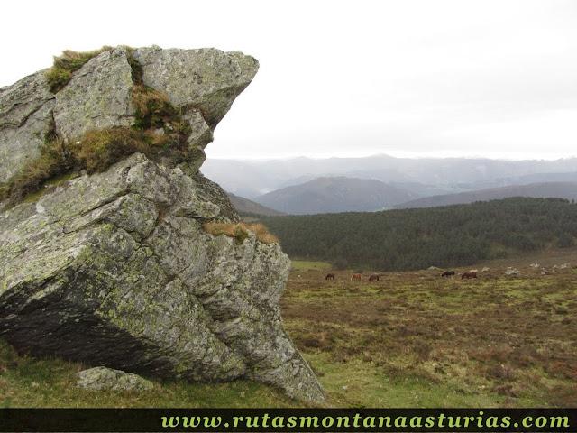Bajando del Penouta, junto a una roca