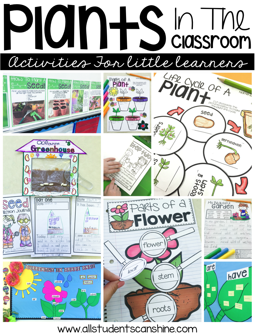 Plant Ideas \u0026 Activities - All Students Can Shine [ 1162 x 886 Pixel ]