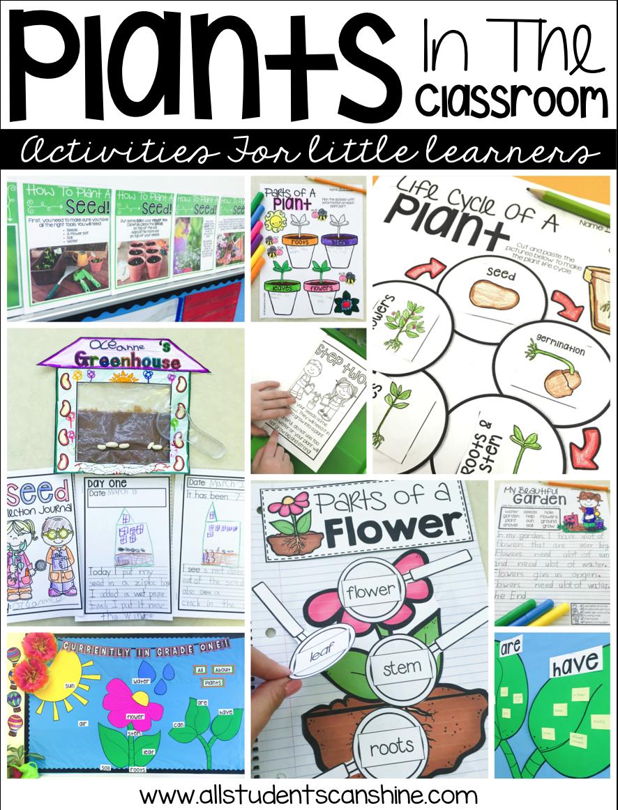 medium resolution of Plant Ideas \u0026 Activities - All Students Can Shine