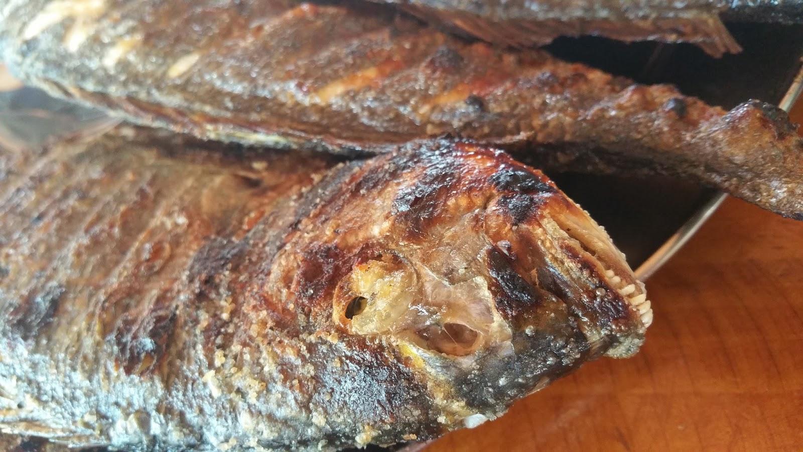 Gegrillter Fisch von den Kornaten