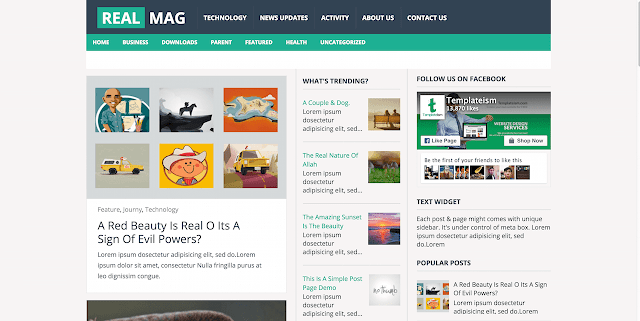 RealMag Free Blogger Template