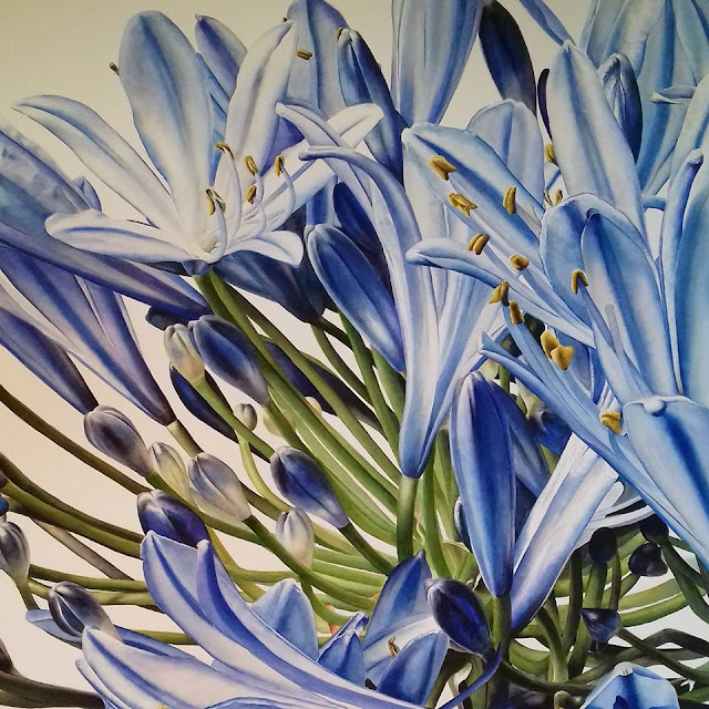 Botanical art of blue flowers - Inky Leaves