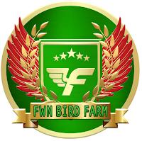 jasa penitipan burung surabaya FWN bird farm