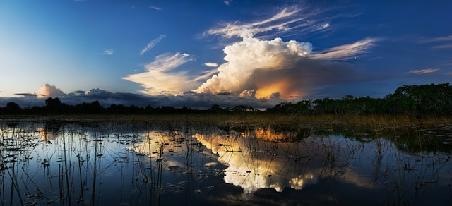 beautiful panorama of Everglades National Park