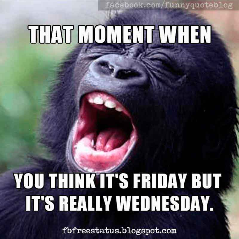 Funny Wednesday humor, that moment when you think it's friday but it's really Wednesday.