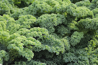 kale/home remedies to reduce high blood pressure