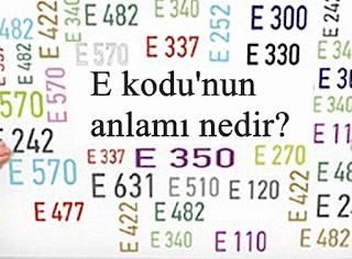 E kodu'nun anlamı nedir?
