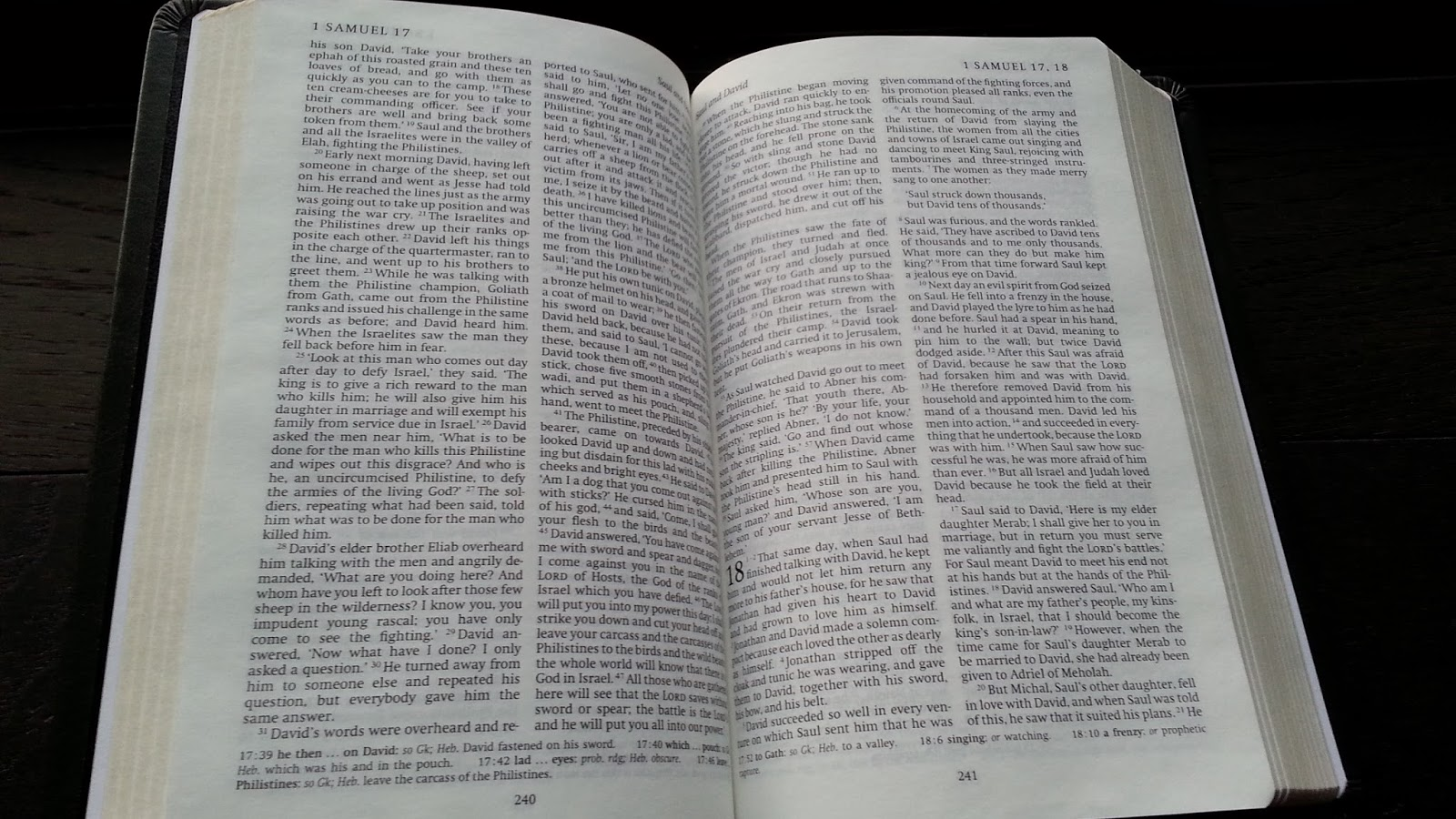 Catholic bibles guest post the revised english bible part 3 editions of the reb with and without the apocrypha are easy to find used online my first copy of the reb was a used cambridge hardcover shown below fandeluxe Choice Image